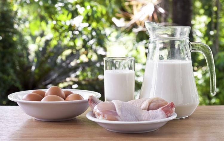 мясомолочная продукция