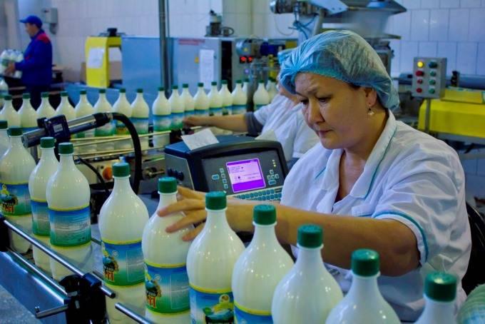 Казахстан, мобильное приложение, молочная промышленность