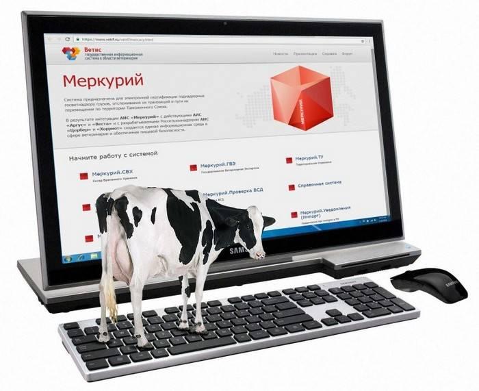 1 января 2018 года, РФ, регистрация, мясомолочное сырье, система ЭВС «Меркурий»