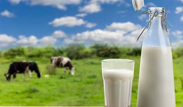 молоко, беларусь