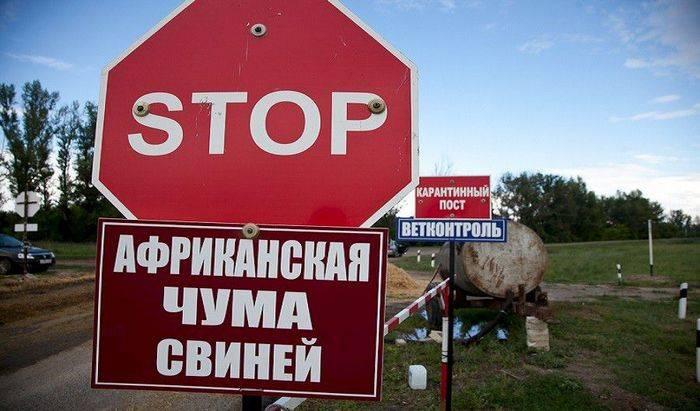 Беларусь, АЧС, импорт свинины, Румыния, Россия