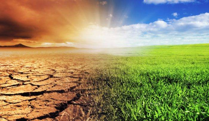 Беларусь, изменения климата, глобальное потепление, убытки, Виктор Мельник, Владимир Логинов
