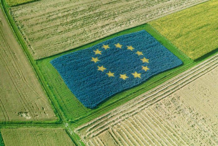 с/х политика ЕС, поддержка, мелкие и средние фермеры, развитие сельских территорий, инвестиции, биоэнергетика