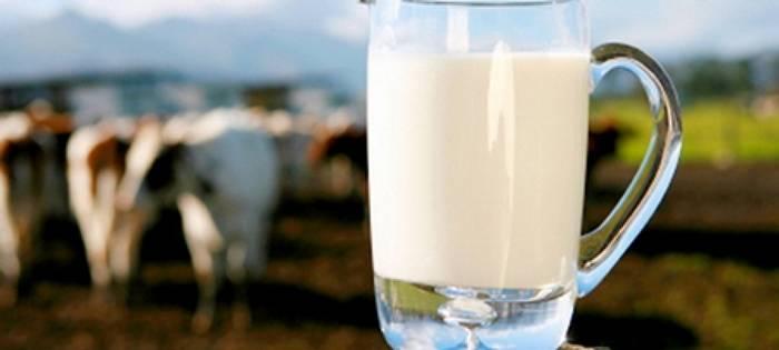 молоко, подсобные хозяйства, Казахстан, низкое качество