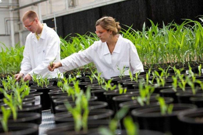 Воронежская область, испытания, биотехнологические сельхозпрепараты