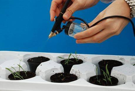 природные гербициды, сорняки, эфирные масла