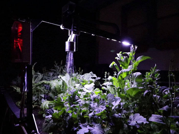 3D, робот, дистанционное выращивание, овощи и фрукты