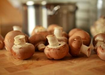 факты, грибы, свойства, польза, любители