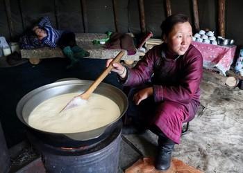 необычные молочные продукты, разные страны, шубат, тарак, скир