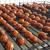 Пенза, птицефабрика, монополист, производство, копченые яица, птицефабрика Колышлейская