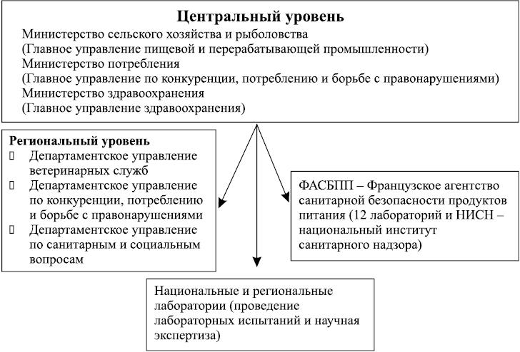 Функции компетентного органа в